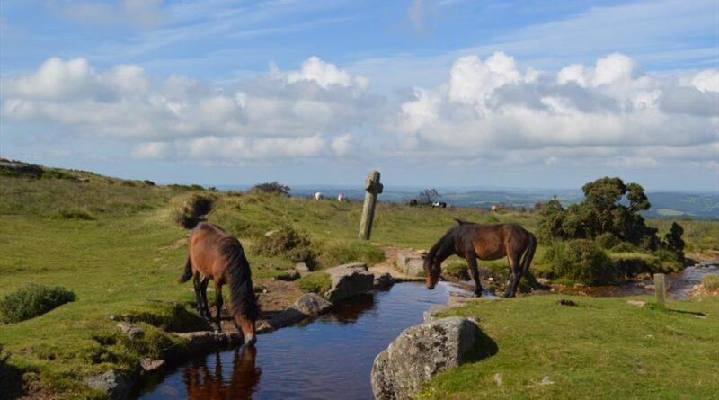I 10 parchi nazionali d'Inghilterra immersi nella natura
