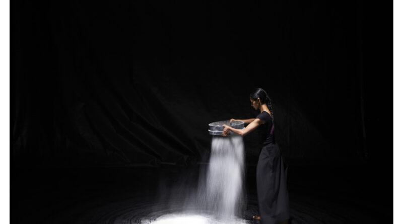 La danzatrice e coreografa indiana Shantala Shivalingappa chiude Torinodanza