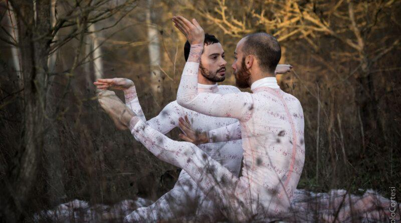 """""""The Wilderness. Niente di tutto ciò è reale"""" di Fabrizio Favale"""